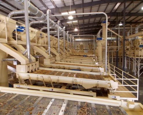 Almond Hulling Shaker Decks